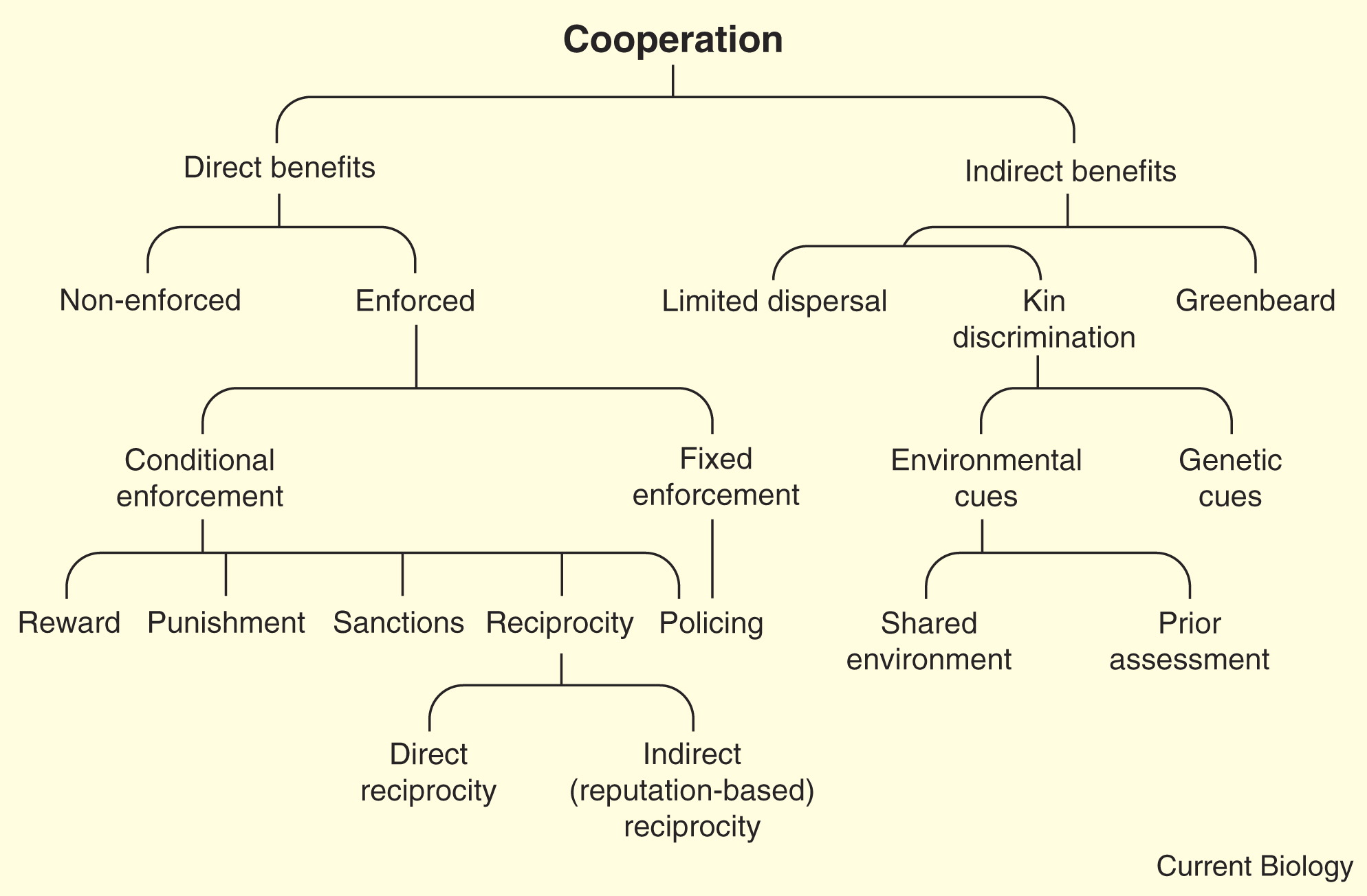 biological_cooperation_mechanisms
