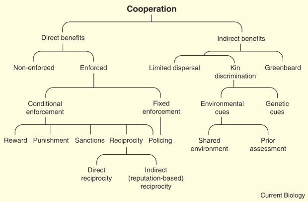 biological_cooperation_mechanisms